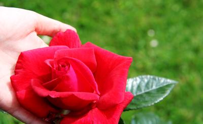 Patronka czystości i przebaczenia – mocą Krwi Chrystusa